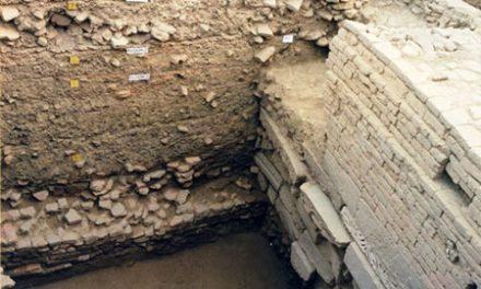 বাবরি মসজিদের নিচে মন্দির নয়, মসজিদ থাকার প্রমাণ বিদ্যমান : প্রত্মতাত্ত্বিক