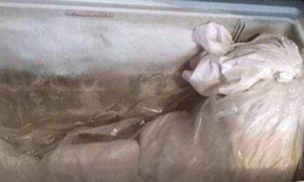 মায়ের মৃতদেহ ১০ বছর ধরে ফ্রিজে রেখে দিয়েছিলেন জাপানি নারী